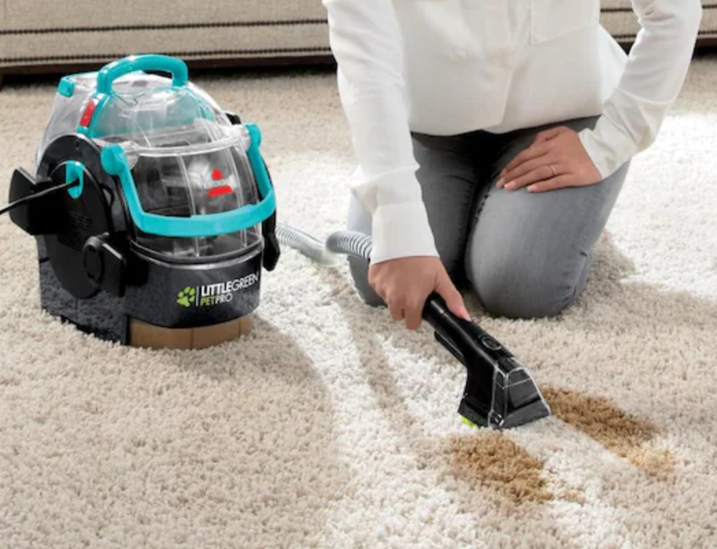 model cleaning carpet with the little green pet pro