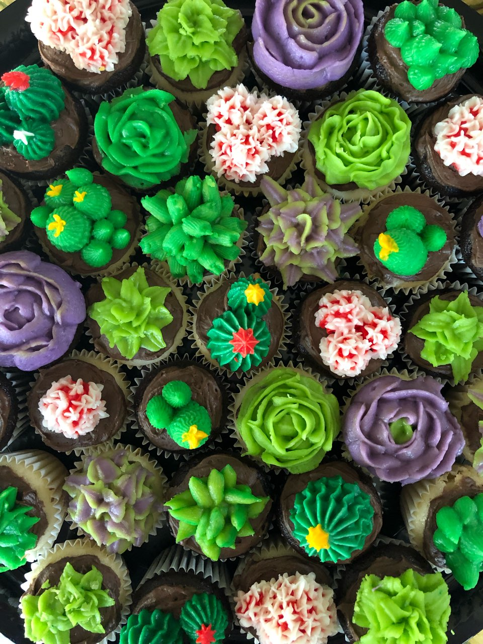 Succulent Cupcakes Recipe By Tasty