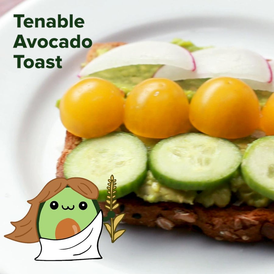 Tenable Avocado Toast (Virgo)
