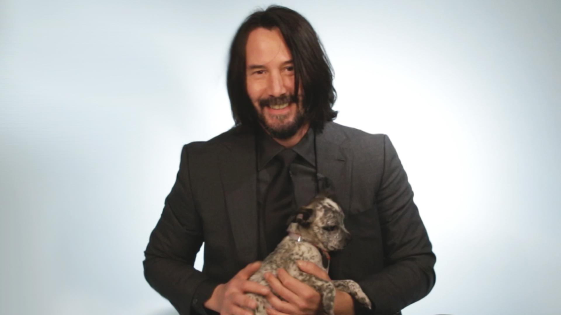 Watch: BuzzFeed Video - Keanu Reeves Plays With Puppies While Answering Fan Questions
