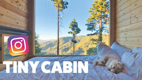 Dog in front of a large window in a tiny cabin