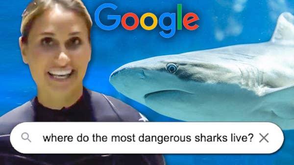 Jillian the aquarist answering shark questions.